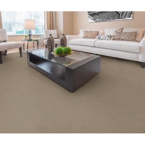 Medium Crop Of Dixie Home Carpet