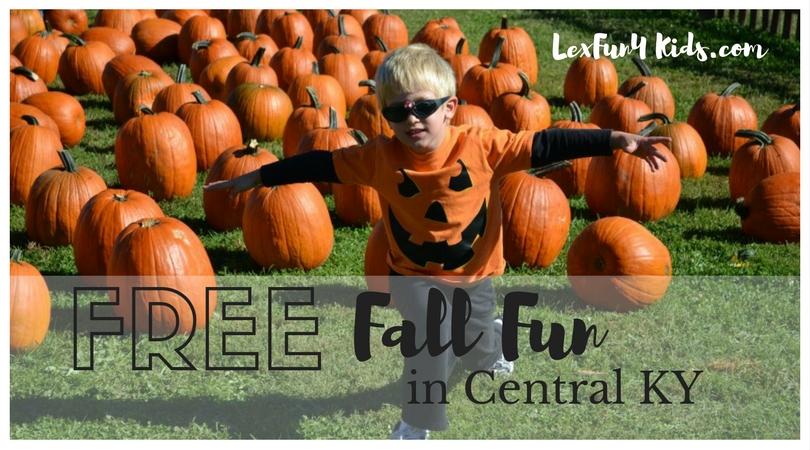 Free fall fun \u2022 LexFun4Kids