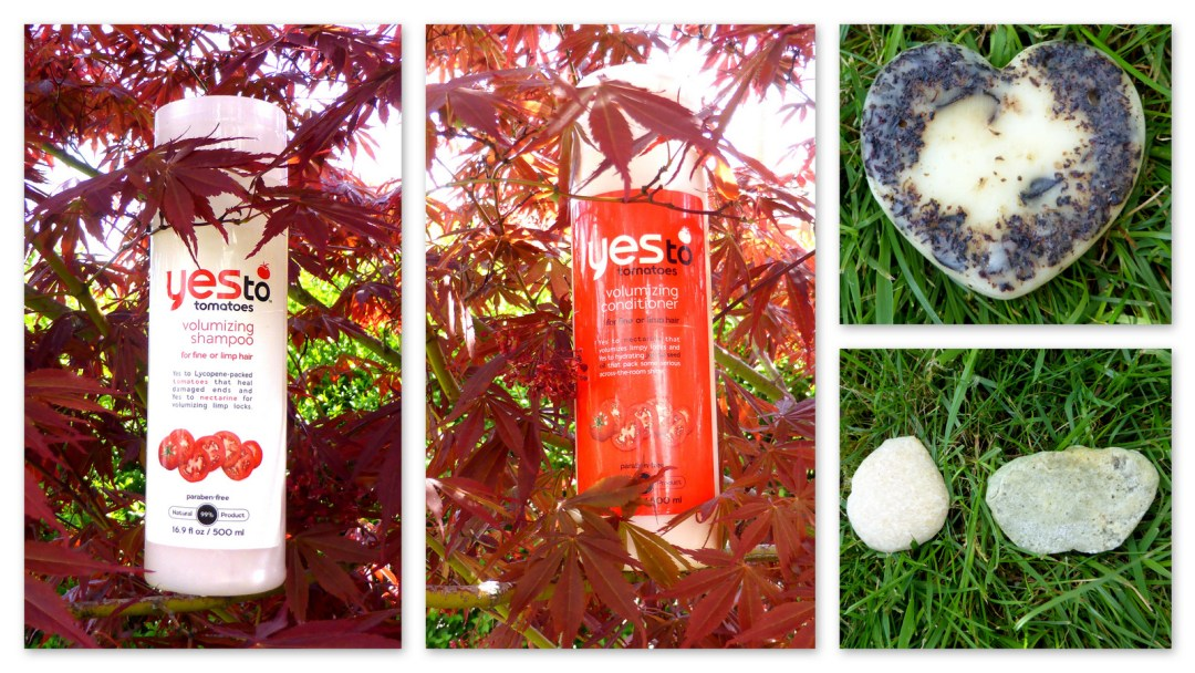 Mes shampooings naturels