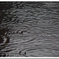 Rain, Roads, and a Roast