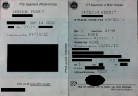Florida Department Of Motor Vehicles Appointments ...