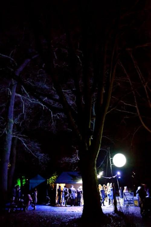 Christmas at Kew 33