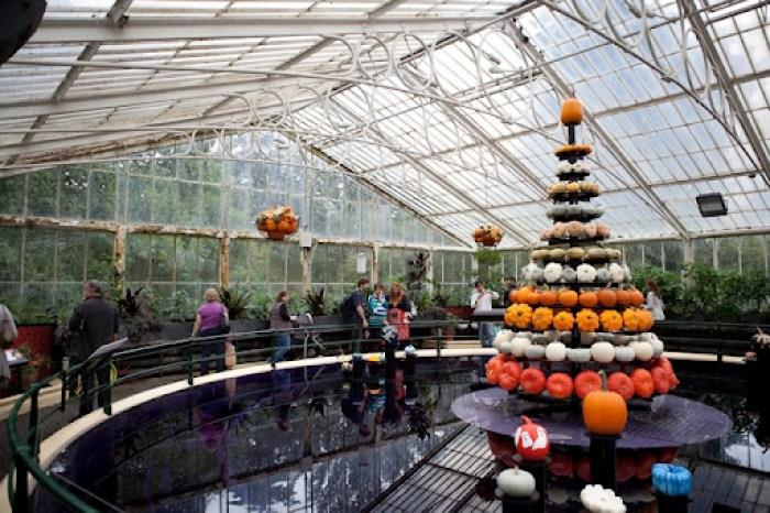 Kew Gardens Pumpkins 8