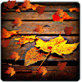 Falling Leaves In Water Live Wallpaper Autumn Lake Live Wallpaper Android Apps On Google Play