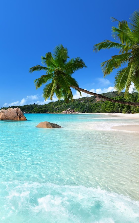 Cute Animated Wallpapers For Cell Phones Tropical Beach Live Wallpaper Android Apps On Google Play