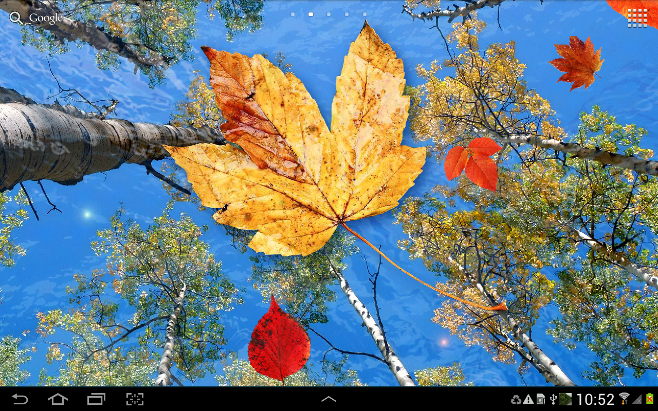 What Is Falling Action Of The Yellow Wallpaper Autumn Leaves Live Wallpaper Android Apps Auf Google Play