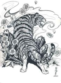 The gallery for --> Traditional Japanese Tiger Tattoo Flash