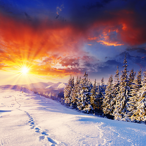 Winter Live Wallpaper HD FREE - Android Apps on Google Play