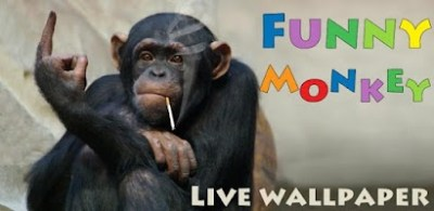 Funny Monkey Live Wallpaper - Android app on AppBrain