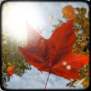 Falling Leaves Live Wallpaper Apk Download Falling Leaves Live Wallpaper 1 9 Apk For Android