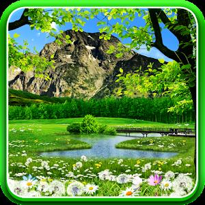 Water Falling Leaves Live Wallpaper Apk Download Summer Live Wallpaper Apk To Pc Download
