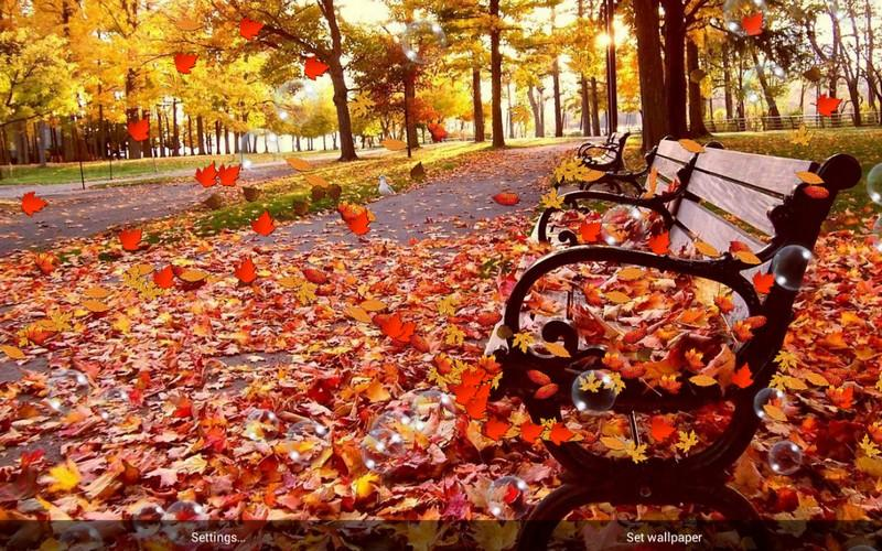 Falling Leaves Live Wallpaper Apps Android Autumn Pro Live Wallpaper Android Apps On Google Play
