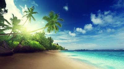 Pantai Latar Belakang - Apl Android di Google Play