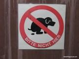 No Shit - Vienna.JPG