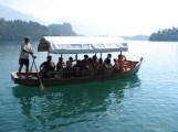 Row Boat to Island - Lake Bled.JPG