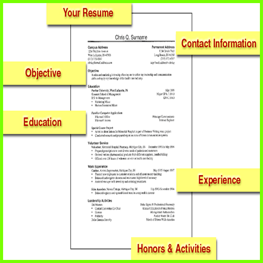 resumes dummies how to write a resume for dummies best professional resume templates regarding wonderful professional - Resume For Dummies