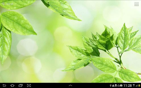 Water Falling Leaves Live Wallpaper Apk Download Leaves Live Wallpaper Apk On Pc Download