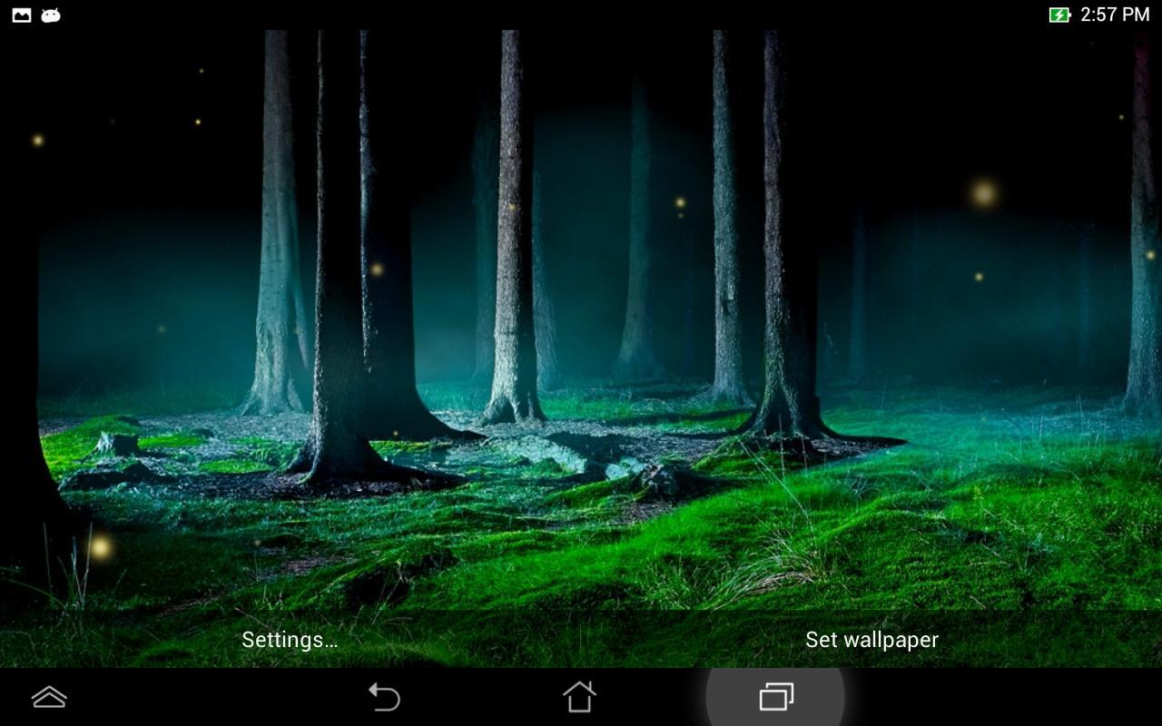 Firefly Fly 3d Live Wallpaper Ateş B 246 Ceği Canlı Duvar Kağıdı Google Play De Android