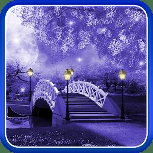 Sakura Falling Live Wallpaper Apk Mystic Night Live Wallpaper Apk For Blackberry Download
