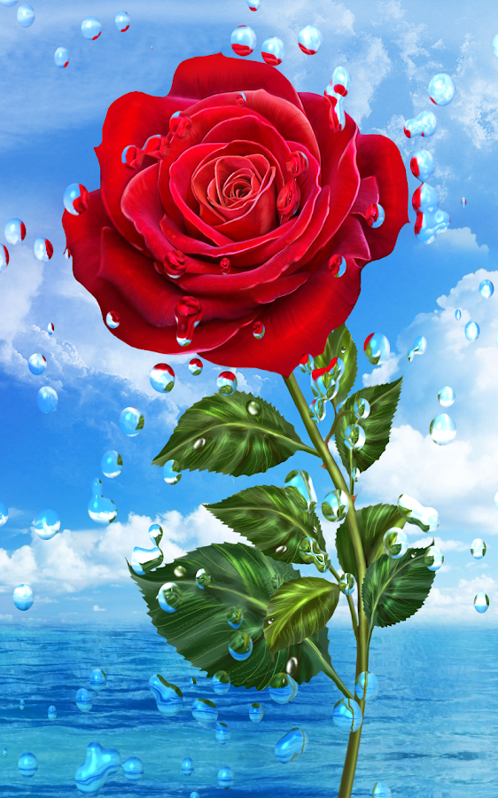 Falling Leaves Live Wallpaper For Android Summer Rain Flowers Hd Lwp Android Apps On Google Play