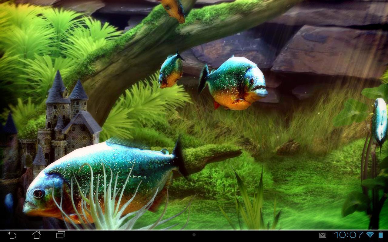 Piranha 3d Aquarium Lwp Live Wallpaper For Android Piranha Aquarium 3d Lwp Apl Android Di Google Play