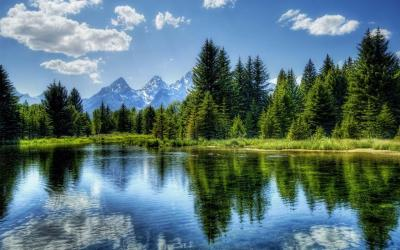 Nature Live Wallpapers - Android Apps on Google Play