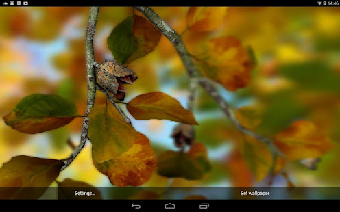 Parallax 3d Effect Wallpaper Pro Autumn Leaves In Hd Gyro 3d Xl Parallax Wallpaper Apps