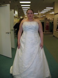 Beach Wedding-Dresses-Gown: Extra Large Plus Size Wedding ...