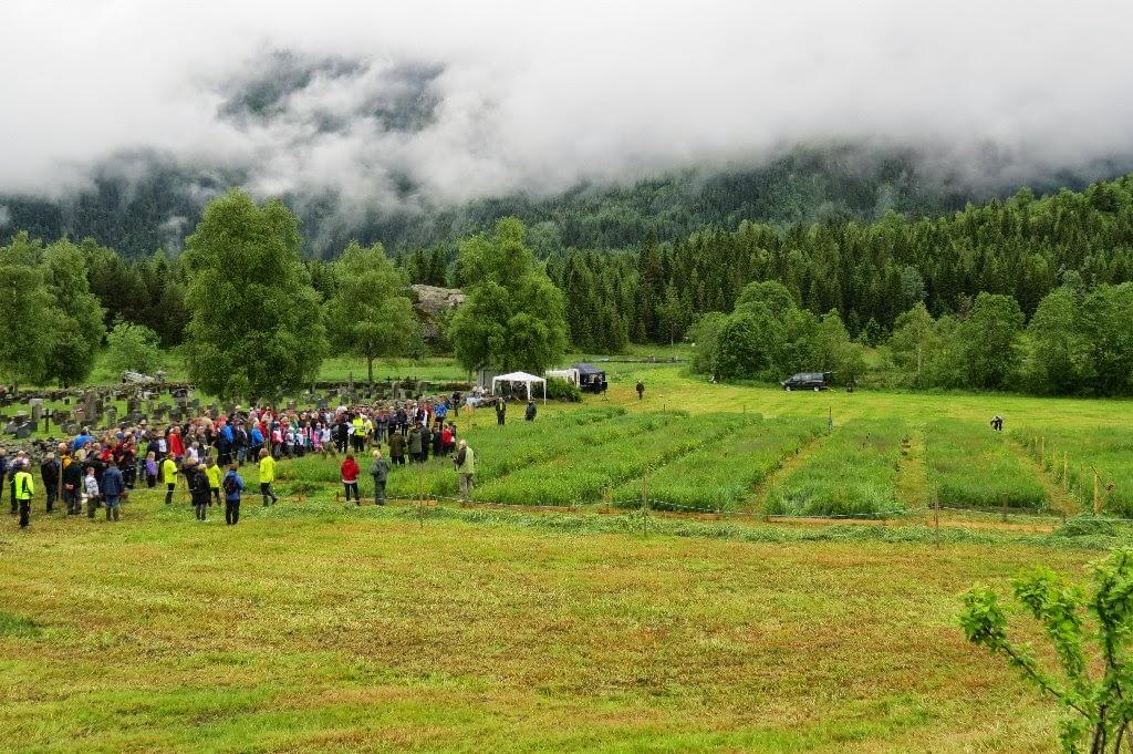 Kosidba u Norveskoj- Turisticka organizacija opštine Ljig189