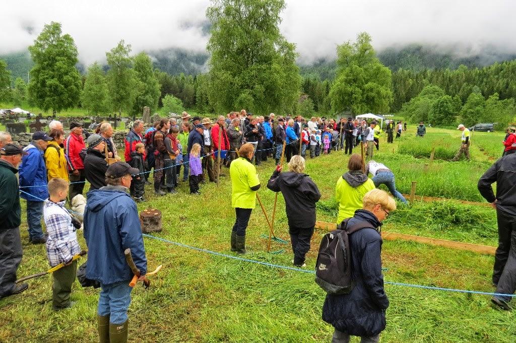 Kosidba u Norveskoj- Turisticka organizacija opštine Ljig188