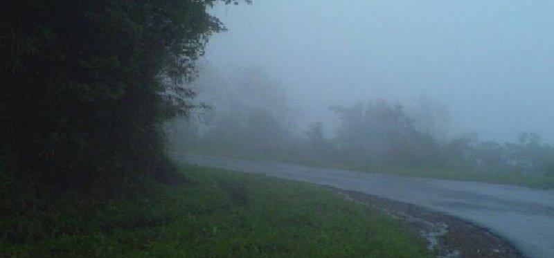 foggy day meghalaya