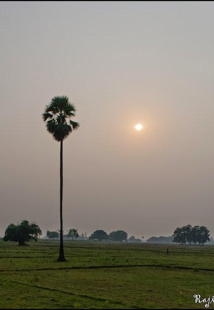 sunrise chhath puja
