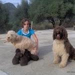 cachorritos 20-10-06 005.jpg