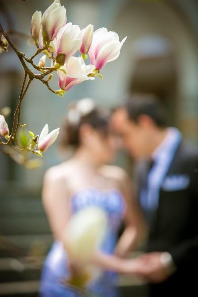 wedding photographer-slovenia- slikanje-poroka-fotografiranje-poroke-bled-slovenia- slikanje poroke-fotograf za poroko- hochzeitsfotograf,hochzeitsfotos, hochzeit-cena-004.JPG
