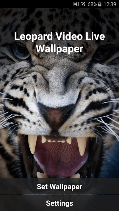 Leopard Video Live Wallpaper - Android Apps on Google Play