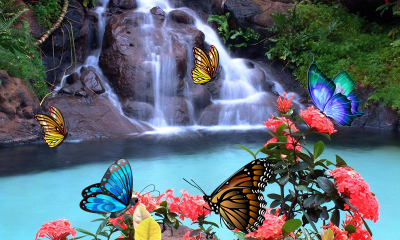 3D Butterfly Live Wallpaper - Android Apps on Google Play