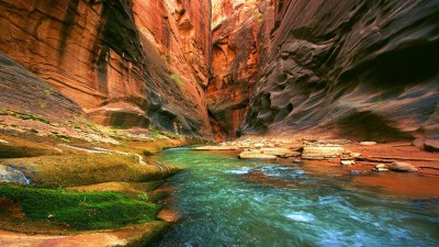 Nature HD Wallpapers - Android Apps on Google Play