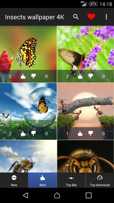 Insects Wallpapers 4K - Android Apps on Google Play