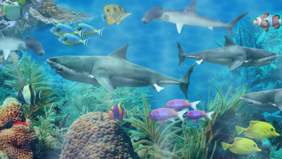 Shark aquarium live wallpaper - Android Apps on Google Play
