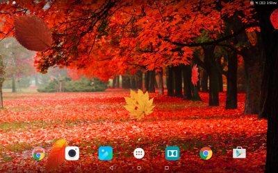 Autumn Forest Live Wallpaper - Android Apps on Google Play