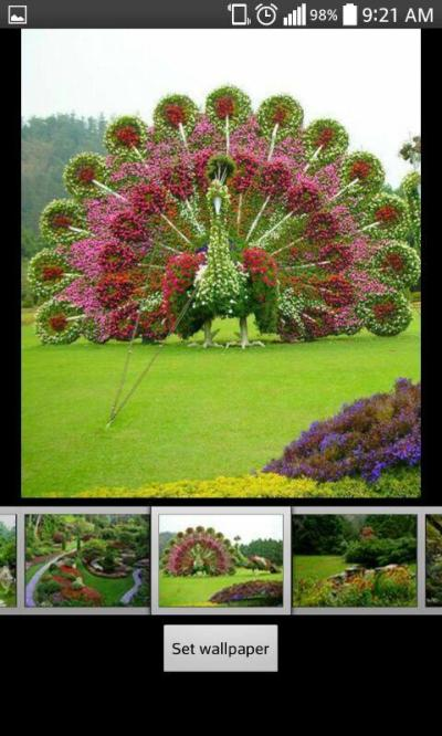 Garden Live HD Wallpapers - Android Apps on Google Play