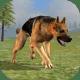Wild Dog Survival Simulator pc windows