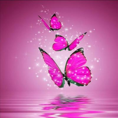 Butterfly Live Wallpaper - Android Apps on Google Play
