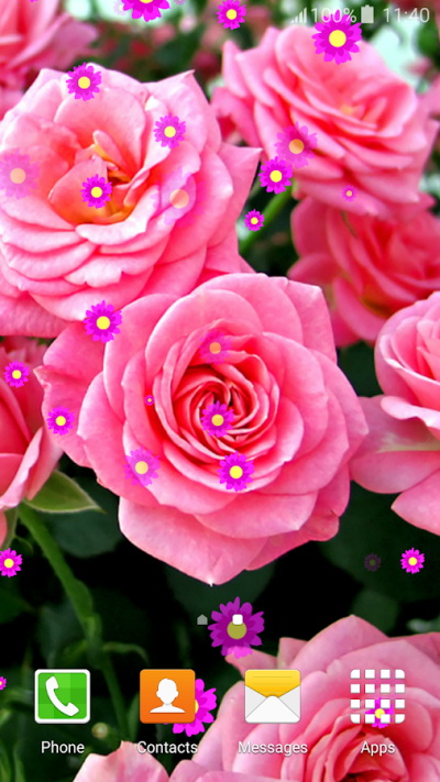 Rose Flower Live Wallpapers - Android Apps on Google Play