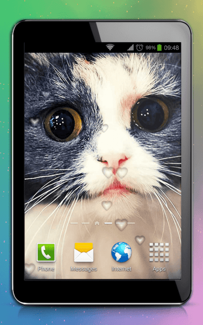 Cute Cats Live Wallpaper - Android Apps on Google Play