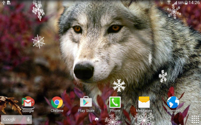 Wolf Live Wallpaper - Android Apps on Google Play