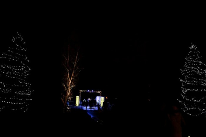 Christmas at Kew 14