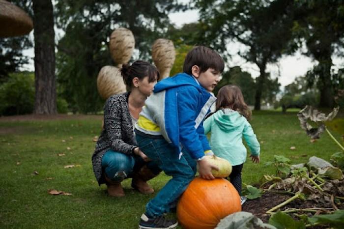 Kew Gardens Pumpkins 24