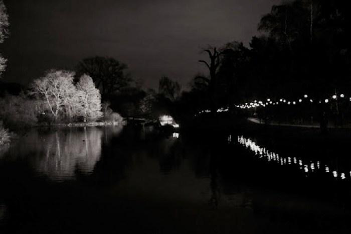 Christmas at Kew 27
