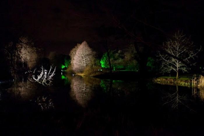 Christmas at Kew 25